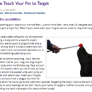 How to Teach Your Pet to Target