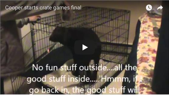 Cooper Starts Crate Games (Cooper)