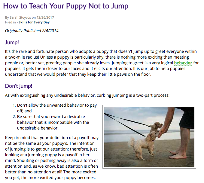 Teaching your Puppy NOT to Jump