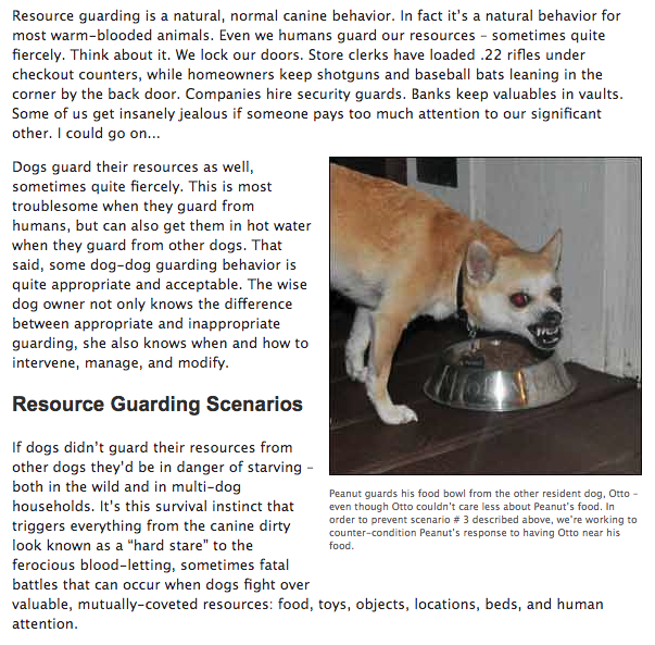 Resource Guarding between dogs – food/objects/people
