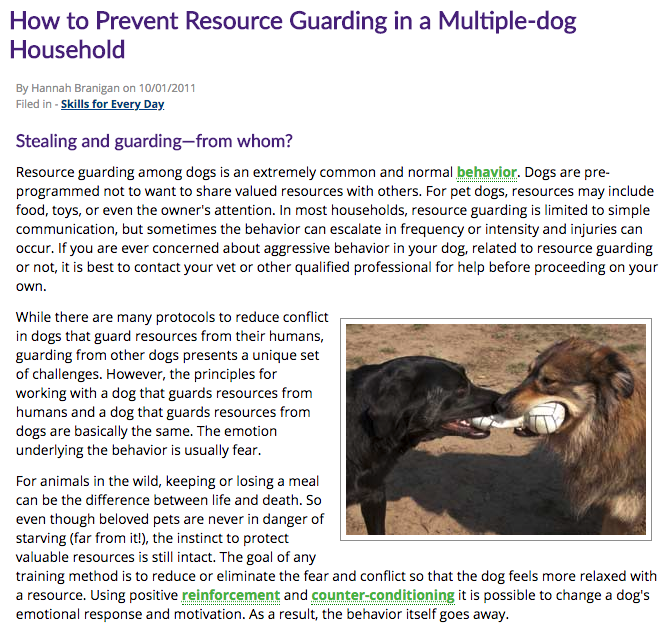 Resource Guarding in a Multi-Dog Household