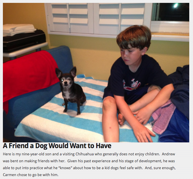 How to be a Kid Dogs Feel Safe With (dogs and babies blog)